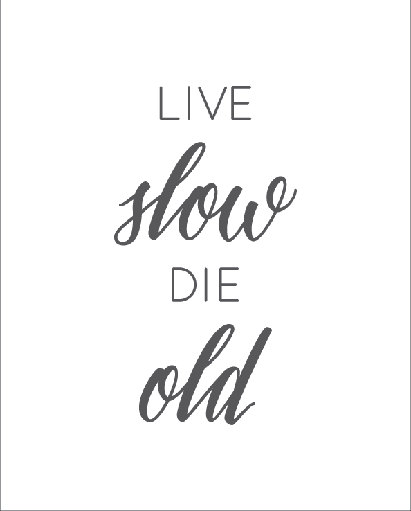 LiLive Slow Die Young print grey