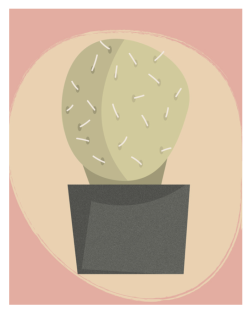 Cactus Makes Perfect by Kristen Lourie 2