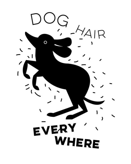 dog hair everywhere print by Kristen Lourie