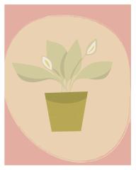 japanese peace lily illustration by Winnipeg designer Kristen Lourie