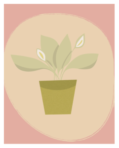 japanese peace lily illustration by Winnipeg designer Kristen Lourie