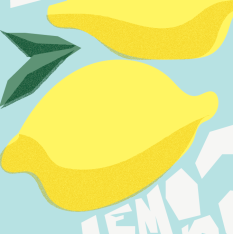 Make Lemonade artwork close up detailed image