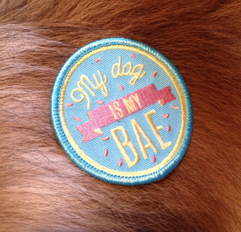 my dog is my bae embroidered patch by kodiak milly 3
