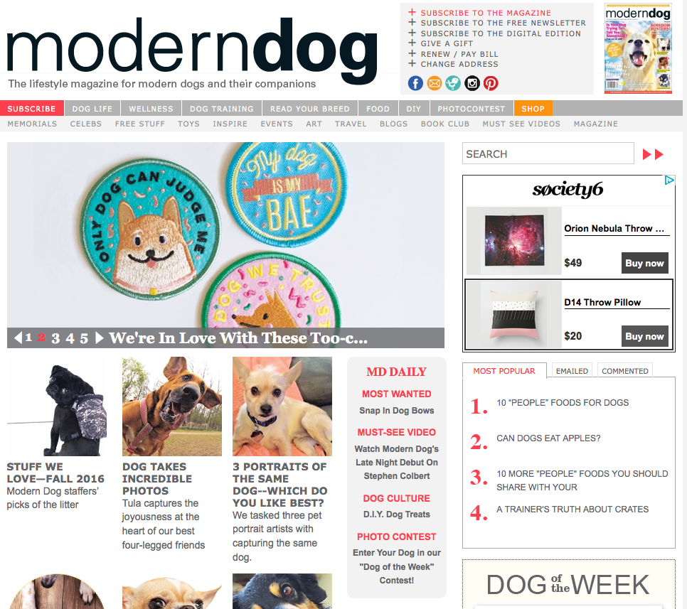 modern-dog-magazine-kodiak-milly-feature